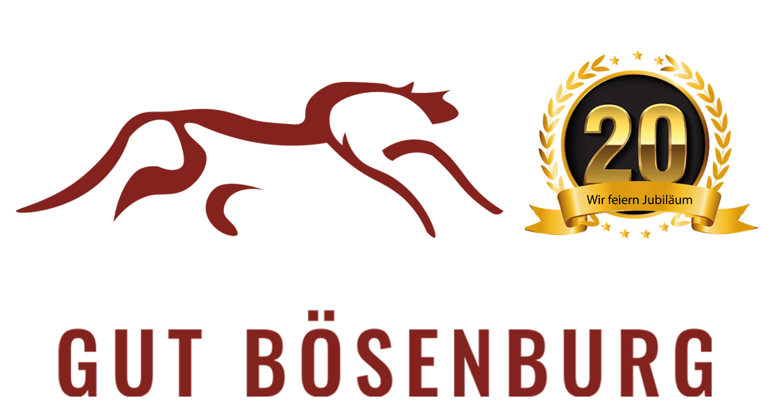 Gut Bösenburg – Zentrum für Western- & Freizeitreiter